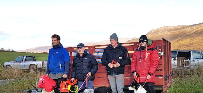 NORGESSERIEPRØVE: Frå venstre vinnar Petter Langeland frå Vuku, Jan Myklebust med Frøya og Rex, Sindre Hindenes frå Ostereidet og Mali Tungen frå Vågå.